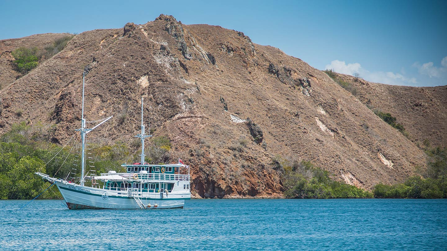 komodo national park rinca royal fortuna cruises